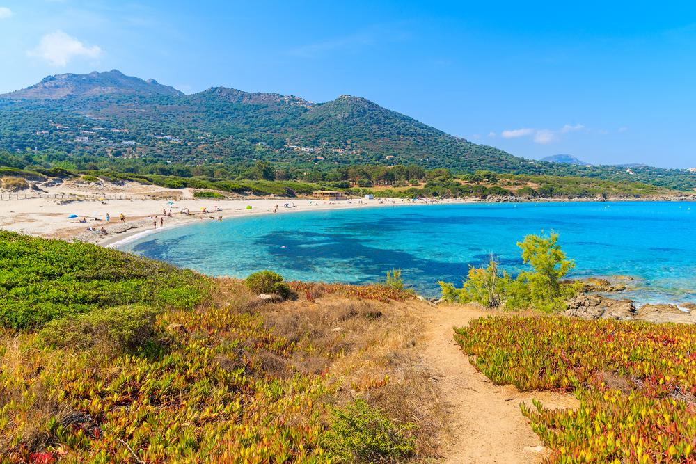 Blick auf den wunderschönen Strand Saleccia mit kristallklarem Wasser in der Nähe von Saint Florent, Korsika, Frankreich